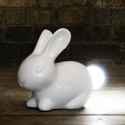 Suck UK Bunny Light