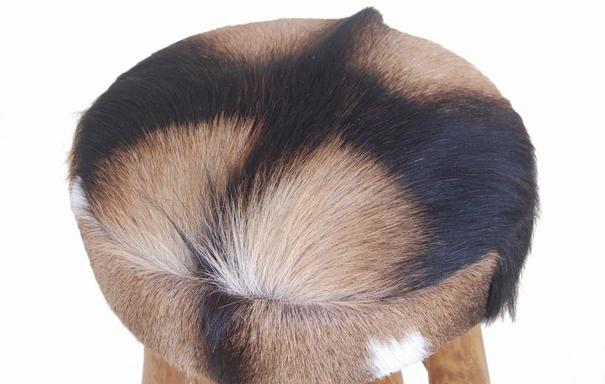 Mohawk Tall Round Goat Hide Bar Stool with Rustic Wood Base image 2