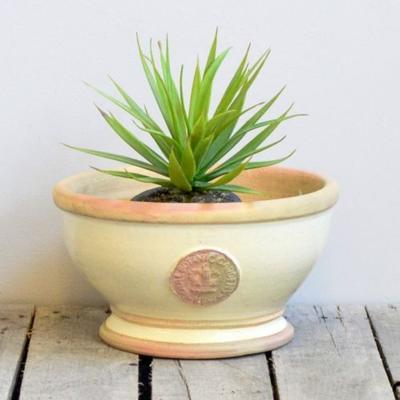 Kew Royal Botanic Gardens Bowl - Ivory Small