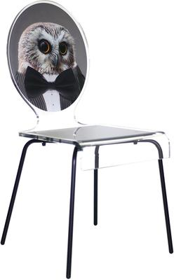 Oval Picture Chair Designer Acrylic Glass