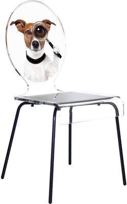 Oval Picture Chair Designer Acrylic Glass image 4