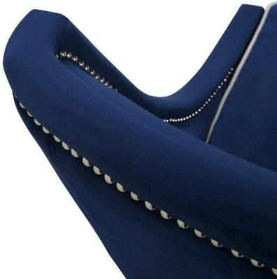 Elger Blue Velvet Occasional Chair image 4