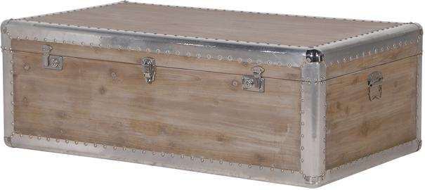 Alpine Chic Wood and Metal Coffee Table Trunk