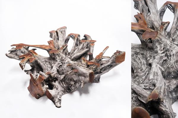 Graviola Teak Root Coffee Table image 3