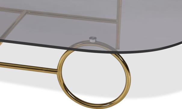 Memoire Coffee Table Smoked Glass Top and Brass Frame Round or Oval  image 7