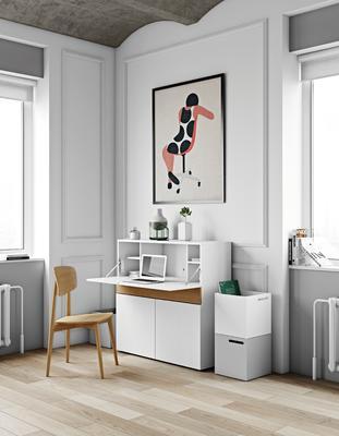 Focus workstation image 14