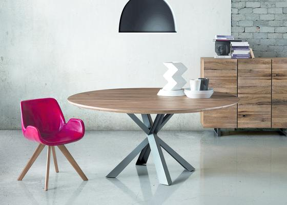 Shell dining chair image 3