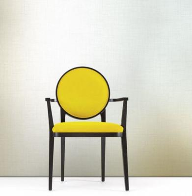 Plaza dining chair (with arms) image 4