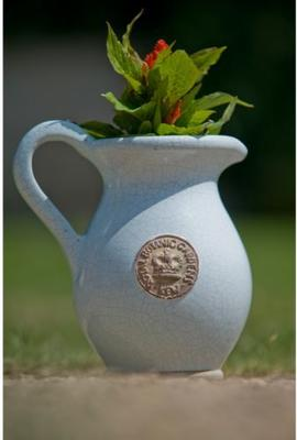 Kew Royal Botanic Gardens Jug - Duck Egg Blue image 2