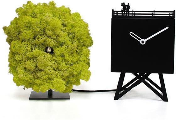 Progetti Bird Watching Cuckoo Clock