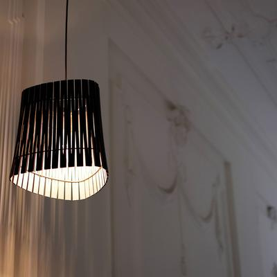 Graypants Ripley Pendant Lamp