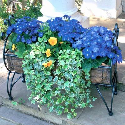 Regal Garden Planter