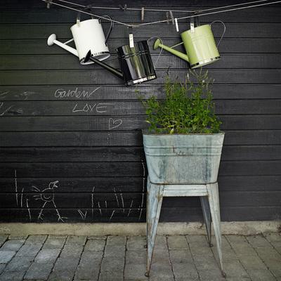 Galvanised Plant Stand image 4