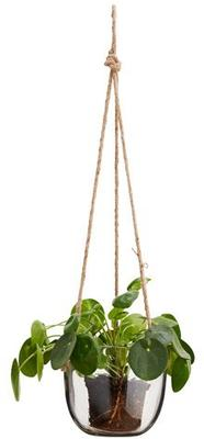 Hanging Glass Planter with Jute Cord image 2