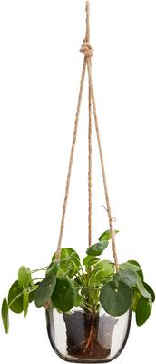 Hanging Glass Planter with Jute Cord image 3