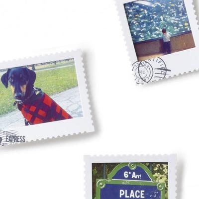 Umbra Set of 9  Postal Photo Display image 2