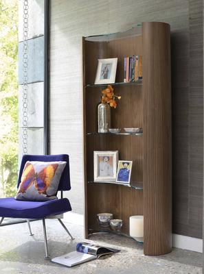 Tom Schneider Swirl Shelves