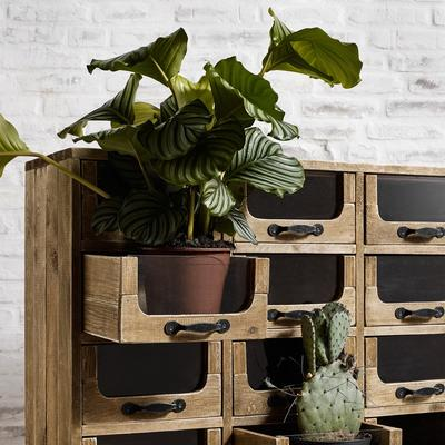Multi Drawer Rustic Pharmacy Cabinet Pine and Iron image 5