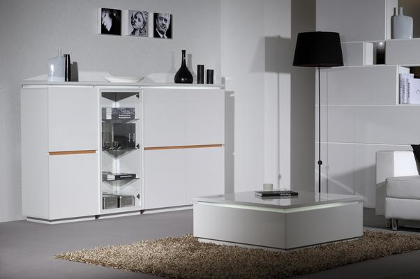 Electra 4 door storage unit image 6