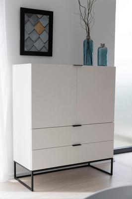 Kiba 2 door 2 drawer cabinet (Sale) image 4