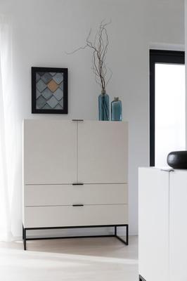 Kiba 2 door 2 drawer cabinet (Sale) image 5