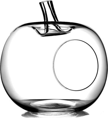 Apple Shaped Terrarium Glass Storage Jar 23cm image 2