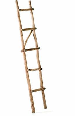 Eucalyptus Ladder Towel Rail