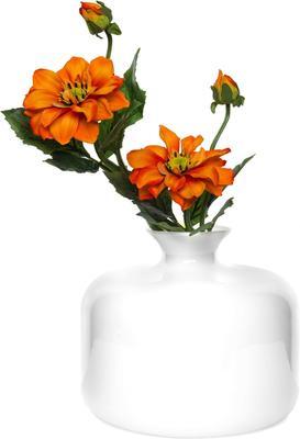 Vase Blanche 1