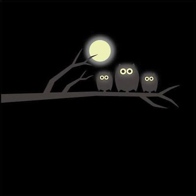 Glow in the Dark Owl and Moon Wall Sticker