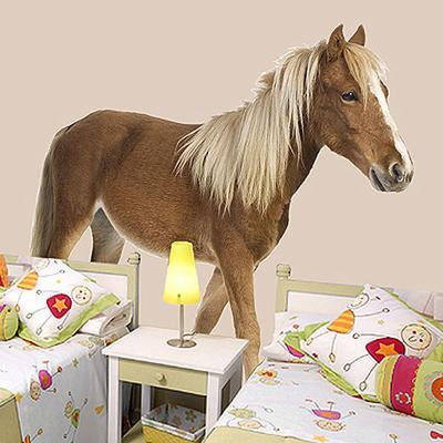 Pony Wall Sticker
