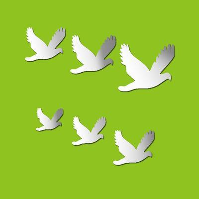 Flock of Birds Mirror Wall Stickers