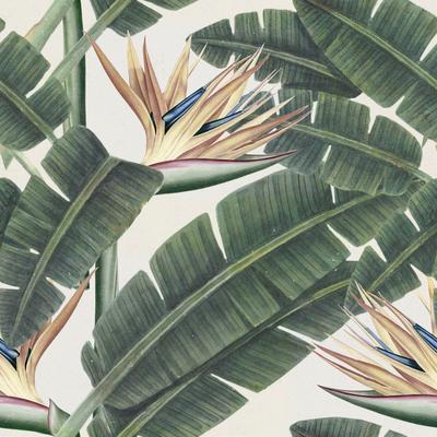 Tropical Bloom Wallpaper image 2