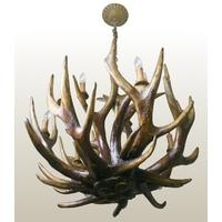 Stag Antler Chandelier - 6 Arm