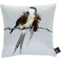 Jean Paul Gaultier - Envol Cushion - Gris - 40x40cm