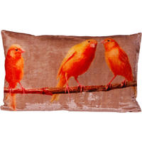 Orange Canaries Velvet Cushion Cover