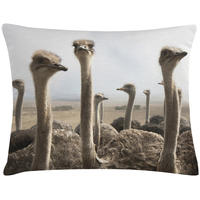 Rectangular Ostrich Cushion