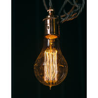 Large Edison Squirrel Cage Bulb