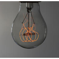 Quad loop light bulb. 25w. 3000hrs