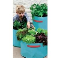 Vegetable Patio Planter Turquoise from Garden Beet