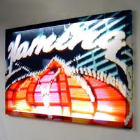 Flamingo Las Vegas Glo-Canvas from Duffy London