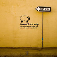 I am not a Sheep Sticker - Spin Wall Stickers