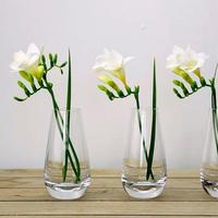 Mira Single Stem Flower Vase 30cm