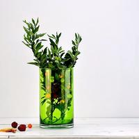 Glass Vase Lime Green Cylinder Flower Vase Modern Retro