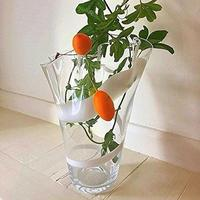 Glass Handkerchief Vase 18cm White by Solavia