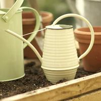 Watering Can - Buttermilk