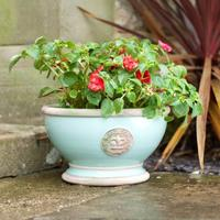 Kew Royal Botanical Gardens Bowl Tiffany Blue Large