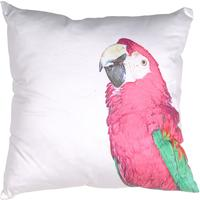 Pink Parrot Cushion