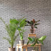 Silver Grey Brick Wallpaper by Piet Hein Eek
