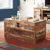 Coastal Trunk Box by Indian Hub