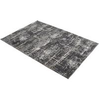 Caprice Grey Viscose Rug 160x230cm by The Libra Company